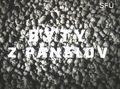 Byty z panelov [dokumentárny film]