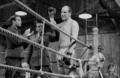 Boxer a smrť [negatív fotografie]